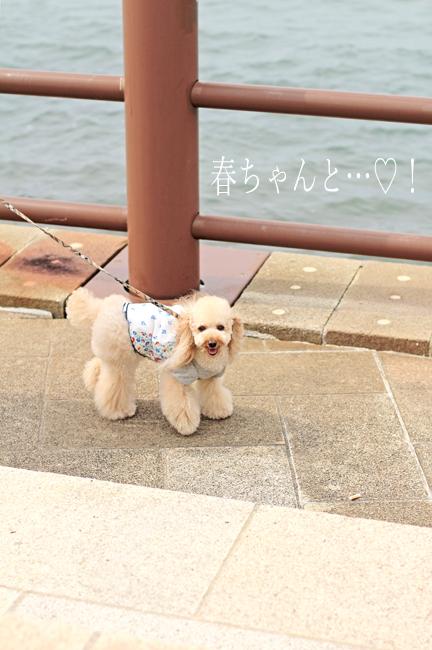IMG_9086香川