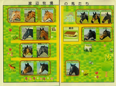 ③渡辺牧場の馬たち