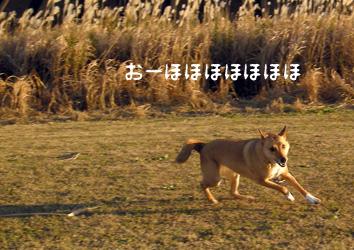 DSCN1073.jpg