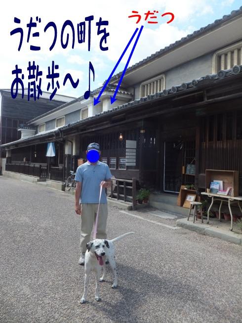blog_0822_154703.jpg