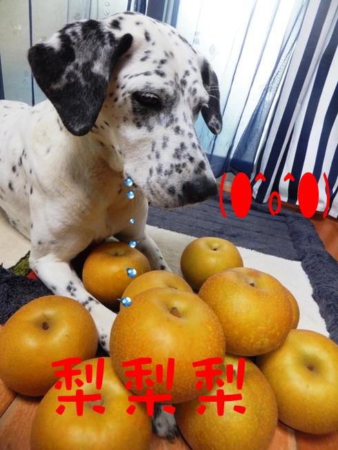blog_0826_173514.jpg