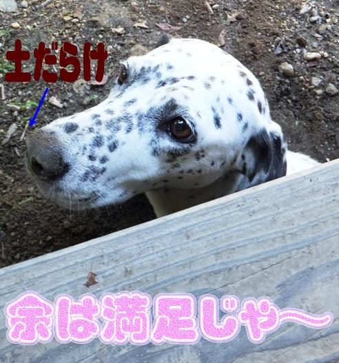 blog_0827_092434.jpg