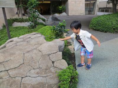 亀石と王子