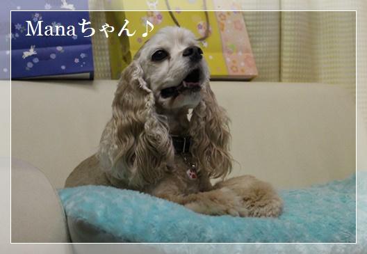 Manaちゃん♪美人さん♪