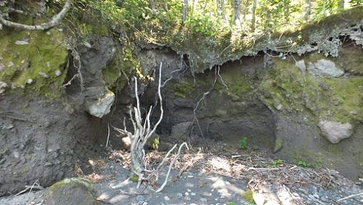 支笏湖 洞窟跡 (5)