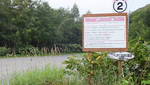 ペンケニコロベツ林道名水 (1)
