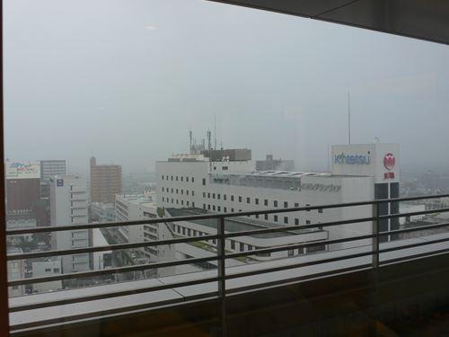 jabiruwakayama001_R.jpg