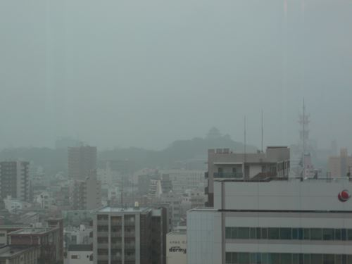jabiruwakayama003_R.jpg