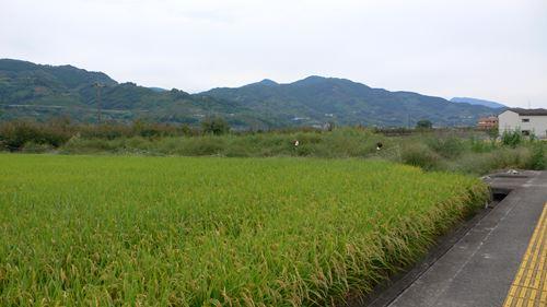 kowaikakasi003_R.jpg