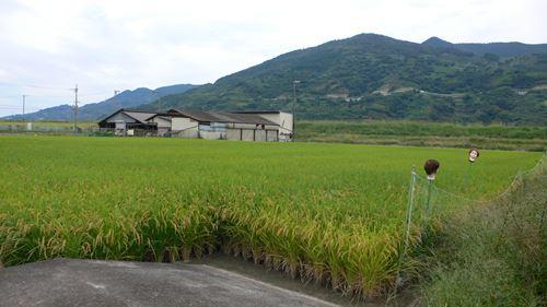 kowaikakasi004_R.jpg