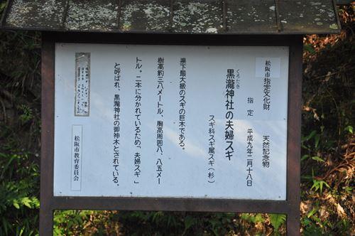 kurotaki0824006_R.jpg