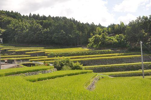 takami0824001_R.jpg