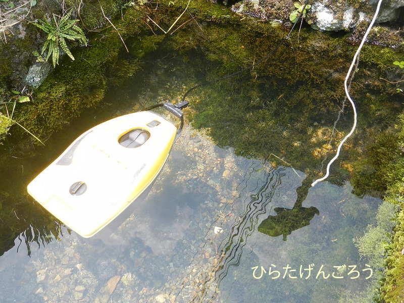 spring water③