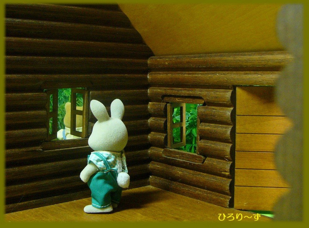 木製丸太小屋 6