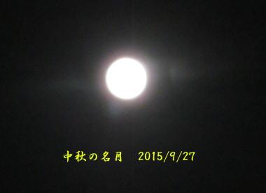 mm589.jpg