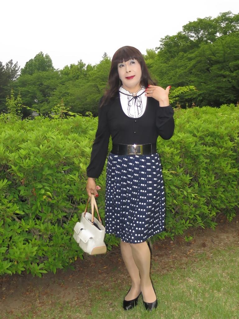 水玉のプリーツスカートA(2)