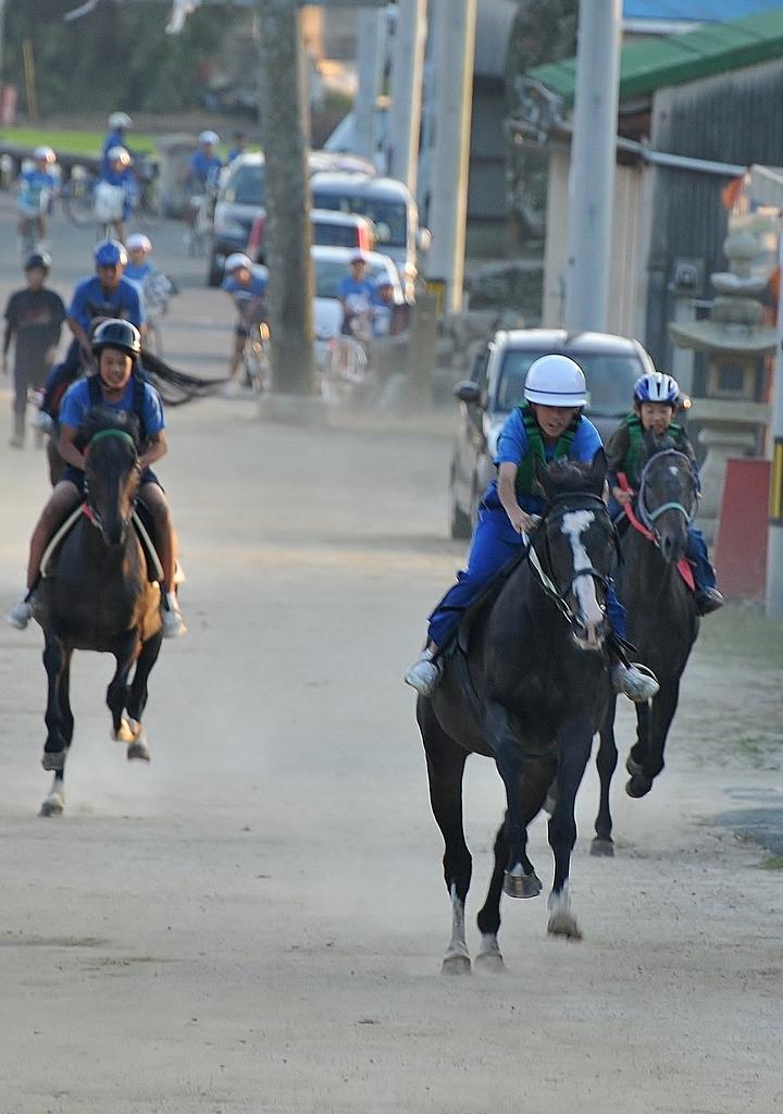 お供馬練習