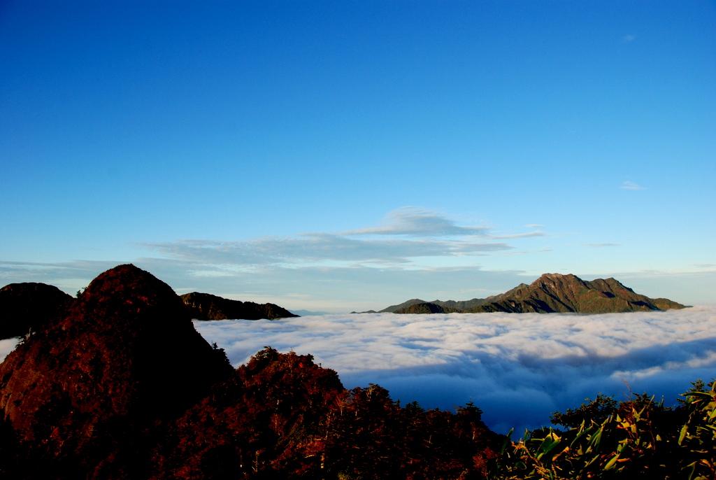 石鎚の雲海