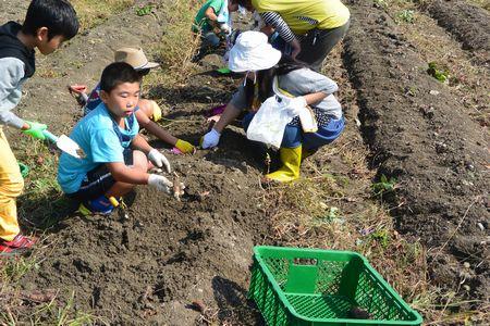 01収穫祭