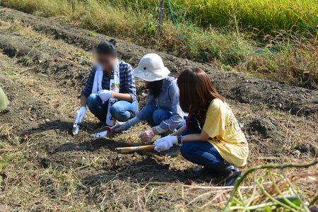 03収穫祭