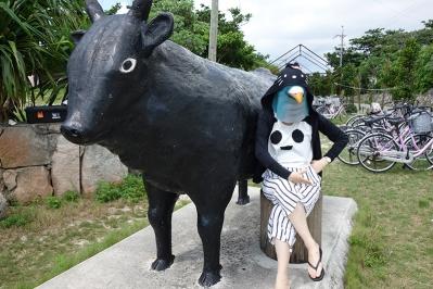 Ishigaki_2015_02_04.jpg