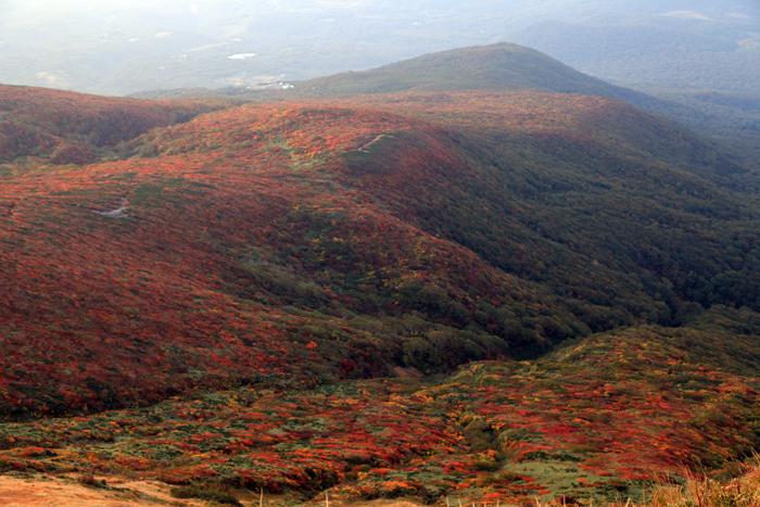 d山頂から見た日の出直後の紅葉