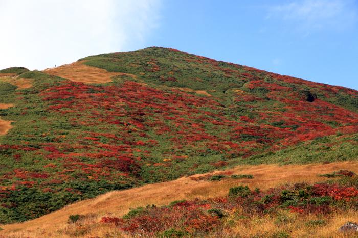 q150923栗駒山の裏掛コースの紅葉