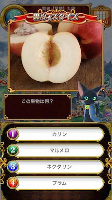 この果物は何?