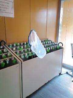 鳥取県立博物館の傘立て