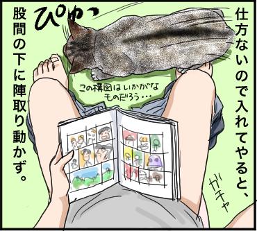 ネコとトイレ2