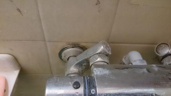 シャワー水栓1