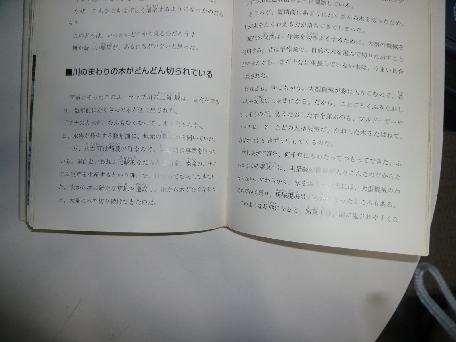 P1020290.jpg
