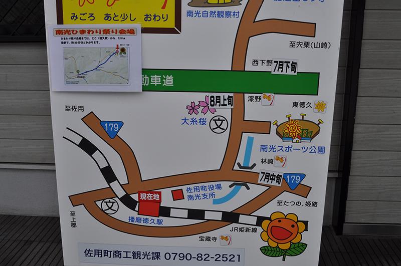 nankouhimawari (4)