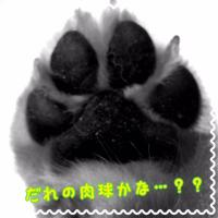 image1+(3)_convert_20150907181357.jpg
