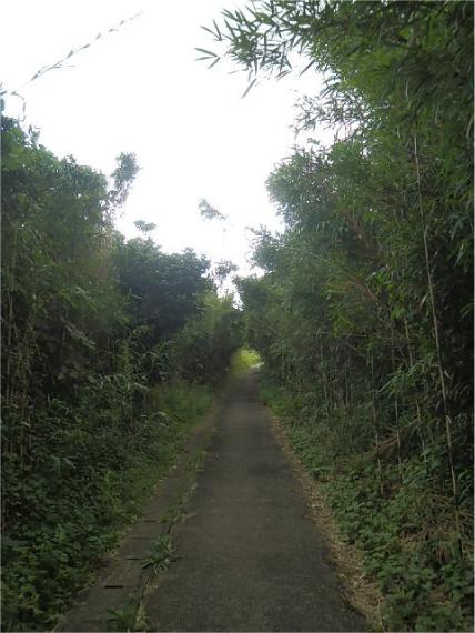 旧福浦灯台へ径