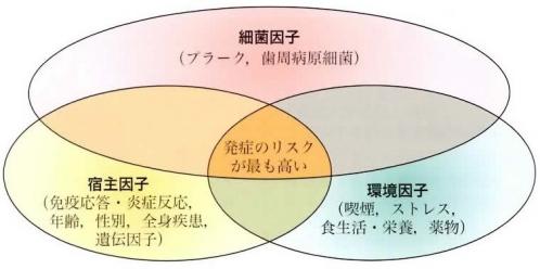 image-sisyuu009a.jpg