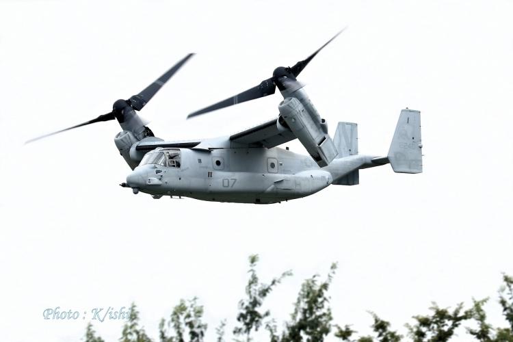 A-130.jpg