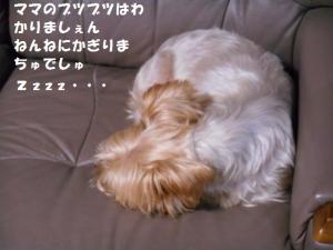 DSCN6476.jpg