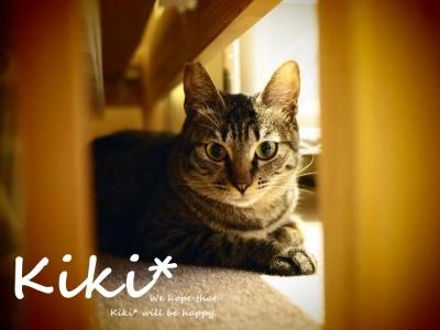 Kikiくん (2)