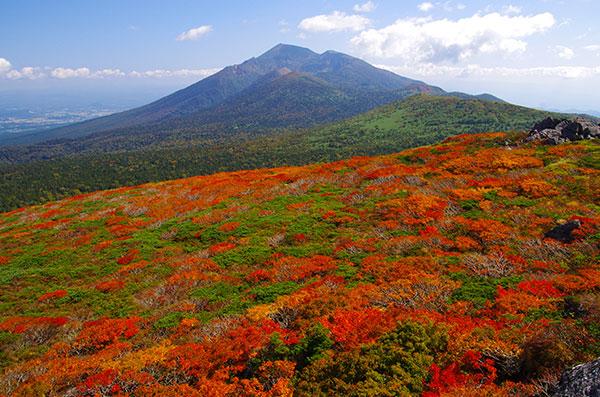 三ツ石山の紅葉と岩手山