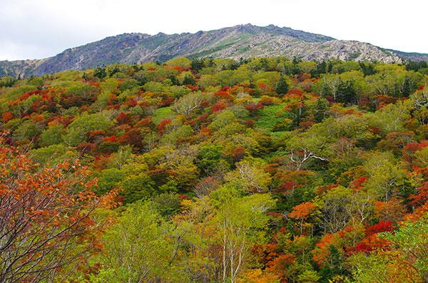 早池峰と紅葉