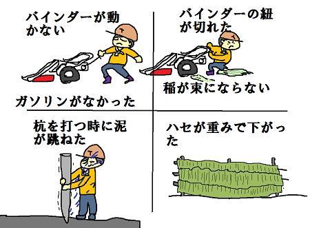 稲刈りアラカルト