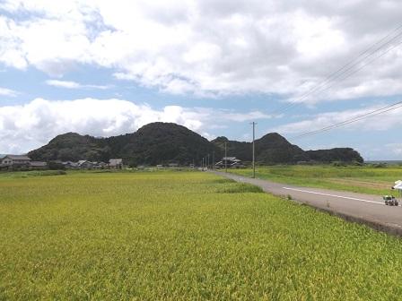 敦賀市岡崎山砦