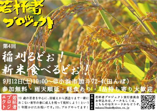 2015稲刈りブログ用