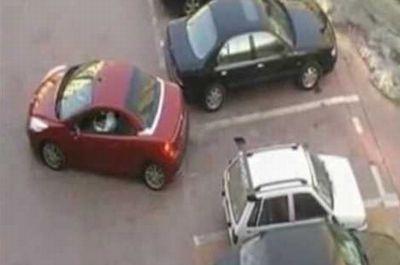 駐車場で無理やり横入りされたときの、超スマートな報復方法