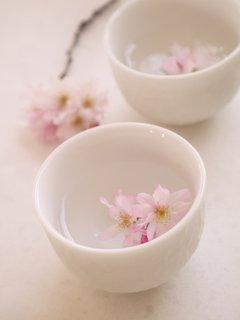 Sakura-zake090915