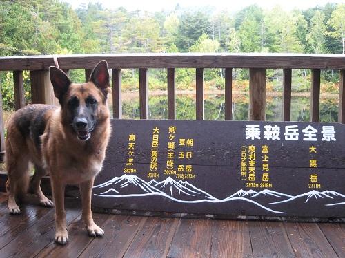 IMG_1183乗鞍岳全景の標識