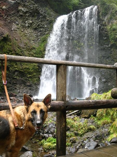 IMG_1216ジェシカと滝