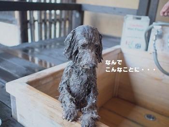 はんなりお風呂編20150911-9