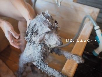 はんなりお風呂編20150911-11